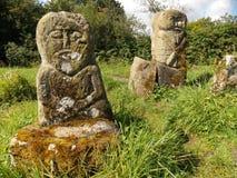 Idoli del celtico dell'isola del boa Fotografia Stock Libera da Diritti