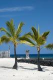 Idoli di Tiki alla grande isola dell'Hawai. Posto di Refug Fotografia Stock