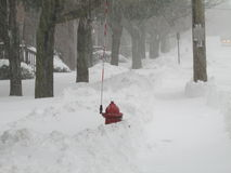 """Idrante antincendio con il bastone di posizione in neve Gennaio 2016, U.S.A. Ð """" Immagini Stock"""