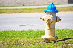 Idrante antincendio del bordo della strada fotografia stock libera da diritti