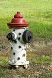 Idrante antincendio nero, bianco e rosso Fotografia Stock