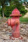 Idrante rosso nel parco fotografie stock libere da diritti
