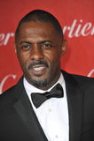 Idris Elba Royalty Free Stock Photography