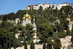 Idron dolina i góra oliwki Zdjęcie Royalty Free