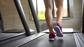 Idrotts- attraktiv caucasian ung kvinna som gör cardio övning i idrottshall Konditionflicka som övar i idrottshallen, trampkvarn stock video
