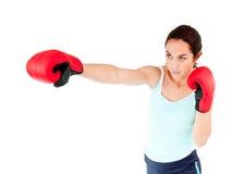 idrotts- kvinna för boxninghandskelatinamerikan Royaltyfria Foton