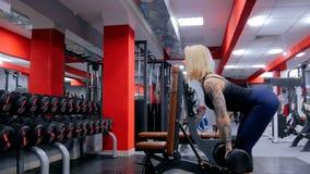 Idrotts- lyftande hantlar för ung kvinna på idrottshallen Royaltyfri Bild