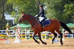 Idrottskvinnan på en häst. Arkivbild