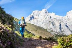 Idrottsman i naturen som stiger till berget Royaltyfria Foton