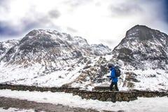 Idrottsman med ryggsäcken som trekking till och med vildmarkberget Royaltyfri Foto