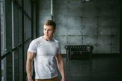 Idrottsman nen för kroppsbyggare för män för studiostående ung sexig Arkivfoto