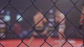 Idrottsman nen i Muttahidaet Majlis-E-Amal för serie för turnering för konkurrens för kampsporter för extrem sport för cirkel det lager videofilmer