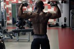 Idrottsman nen Muscular Bodybuilder Posing i idrottshallen fotografering för bildbyråer