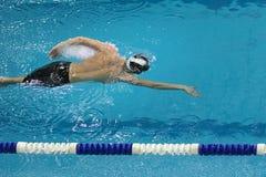 Idrottsman nen simmar fristil royaltyfri fotografi