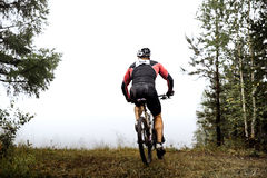 Idrottsman nen som en cyklist rider till och med skog Royaltyfria Foton