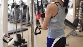 Idrottsman nen som gör övningar på tricepens på maskinen i idrottshallen flicka i sportswear på utbildning stock video