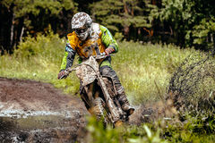 Idrottsman nenmotorcyklisten rider hans cykel till och med en pöl av gyttja i skog Royaltyfria Foton