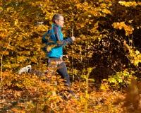 Idrottsman nenspring i skogen i höst Fotografering för Bildbyråer