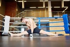 Idrottsman som sträcker splittring i boxningsring Royaltyfri Fotografi