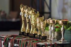 IDSA Dance Championship Capital Cup Minsk- 2015 Award Cups Lineup. Minsk, Belarus-September 27, 2015: IDSA Dance Championship Capital Cup Minsk- 2015 Award Cups stock images
