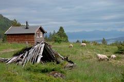 Idyl noruego Fotos de archivo libres de regalías