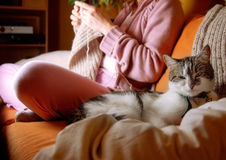 Idylic Scene in Living Room. Woman knitting a pullover, focus on the cat in foreground Stock Photo