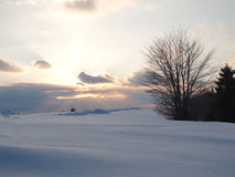 Idylic sunset at a winter snowy field in the twilight Stock Image