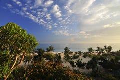 Idyliic tropischer Strand Stockfoto
