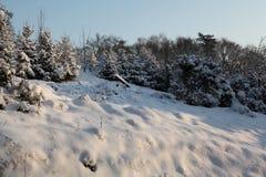 Idyll di inverno in natura Fotografia Stock