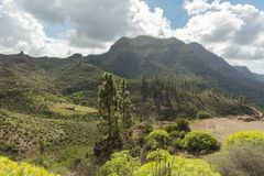 Idyll nature with mountain landscape. In Gran Canaria Royalty Free Stock Photography