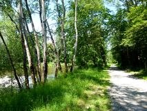 Idyll on the river with row of trees and hiking trail in southern Germany royalty free stock photo