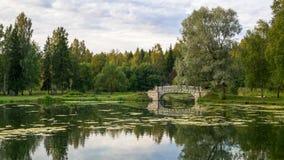 Idylla pokojowy jezioro z starym mostem w zieleń parku obrazy royalty free