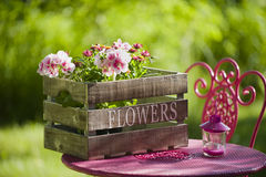 Idylle de jardin Photo stock