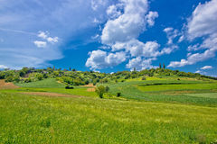 Idyllic africultural green landscape of Croatia Stock Photography
