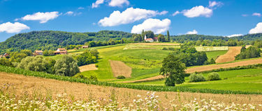 Idyllic agricultural landscape panoramic view Stock Photography