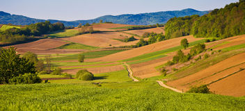 Idyllic agricultural landscape panoramic view Stock Image