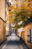 Idyllic alley Royalty Free Stock Images