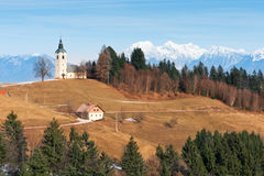 Idyllic Alpine countryside with church. Idyllic Alpine countryside. Small church on snowy mountains background, rural house and forest under blue sky. Slovenia Royalty Free Stock Images