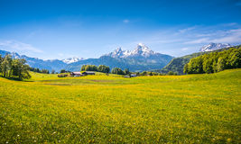 Idyllic alpine landscape with green meadows, farmhouses and snow-capped mountain tops Royalty Free Stock Photography