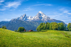 Idyllic alpine landscape with green meadows, farmhouses and snow-capped mountain tops. Idyllic landscape in the Alps with fresh green meadows, blooming flowers Royalty Free Stock Photography