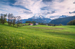 Idyllic alpine landscape with green meadows, farmhouses and snow-capped mountain tops Stock Photography