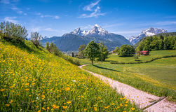Idyllic alpine landscape with green meadows, farmhouses and snowcapped mountain tops Stock Image