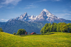 Idyllic alpine landscape with green meadows, farmhouses and snowcapped mountain tops Stock Photography