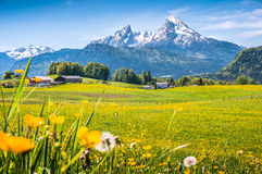 Free Idyllic Alpine Landscape With Green Meadows, Farmhouses And Snowcapped Mountain Tops Stock Photography - 62881492