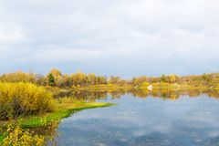 Idyllic autumn lake scenery with bright trees and bushes stock photography