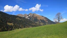 Idyllic autumn landscape near Gstaad Stock Photo