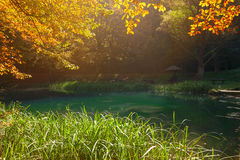 Idyllic autumn scenery around the small lake Royalty Free Stock Photos