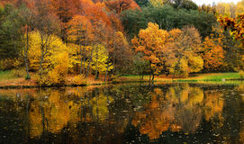 Idyllic autumn scenery Royalty Free Stock Photo