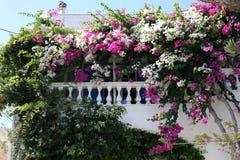 Idyllic balcony on Santorini Island, Greece Stock Images