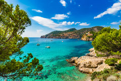 Idyllic bay of Camp de Mar Majorca Spain Mediterranean Sea. Idyllic island scenery, Majorca beautiful view of Camp de Mar bay coast, Spain Mediterranean Sea Royalty Free Stock Image